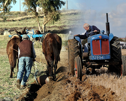 traktor-szantas-szamar