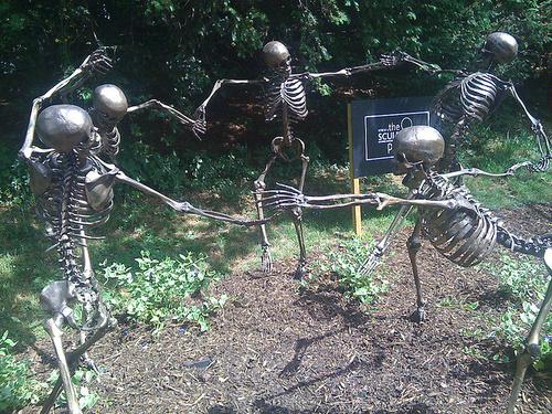 csontvazak-kert-muveszet_width