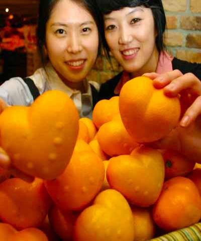 seoul-narancs