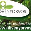 A növényorvoslás szerepe a kertben és nagyüzemben