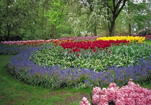 valtozatos-novenyek-kert