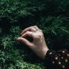 Kúszóborókák a kertben (Juniperus horizontalis és társai)