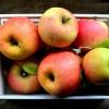 Mi olyan különleges az almában?