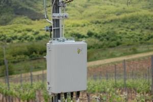 Innovatív növényvédelem a szőlőskertekben