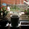 Ablakpárkány kert kialakítása