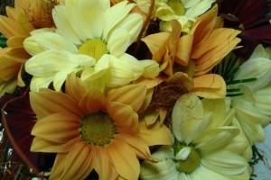 Őszi Kertészeti Napok 2011