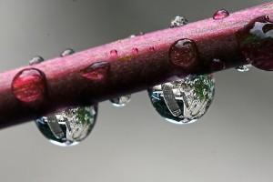 Esővíz a pincében - de nem gond!