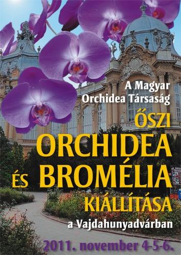 orchidea-bromelia-kiallitas-2011