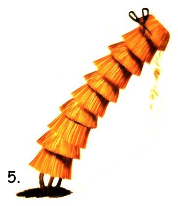 5-lepes