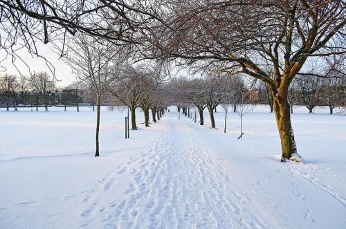 winter-72837_640