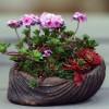 Növényeink megfelelő tápanyag-utánpótlása!