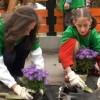 Virágzó Zugló 2011 - Zoborhegy tér 9.
