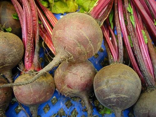 beta-vulgaris-mangold
