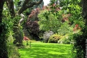 Zöldellő gyep, pompás virágágyások