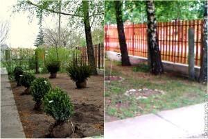 Megépítjük Édenkertjét játék - kertépítés