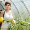 Egy új, sokoldalú rovarölő szer: NATURALIS®
