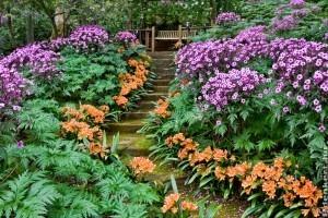 Virágoztassuk fel lépcsőnket!