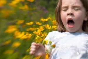 Több mint tíz allergén növény virágpora a levegőben