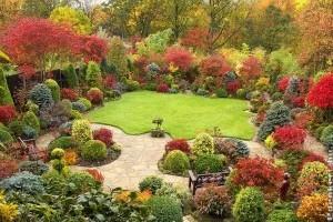 Őszi tennivalók a díszkertben