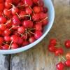 Júniusi finomságok: meggy és zöldbab