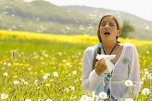 Szénanátha a polleneken túl
