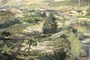 A véltnél százmillió évvel korábbról származnak az első virágos növények