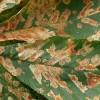 Gesztenyeaknázó-moly