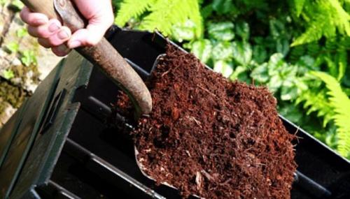 A komposztálás főszereplői a különféle mikroorganizmusok
