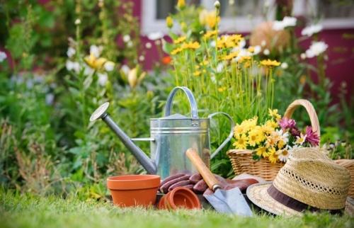 áprilisi tennivalók a kertben