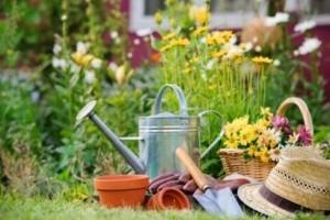 15 tipp a természetközeli kert kialakításához