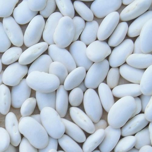 száraz fehérbab