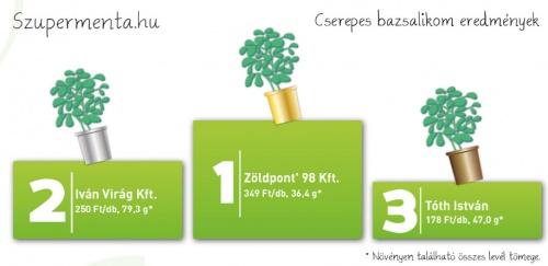bazsi2