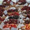 Chilében is jól teljesítenek a magyar nemesítésű gyümölcsök
