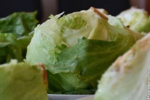 Salátákat tesztelt a NÉBIH