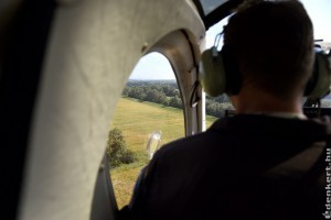 Rendőrségi helikoptert is bevetnek a parlagfűves területek felmérésébe