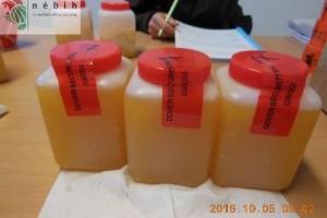 Megint hamis méz: 20 tonnát vontak ki a forgalomból
