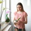 Orchideák a lakásban? Megmondjuk, hogyan!
