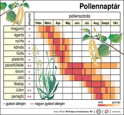 pollennaptr