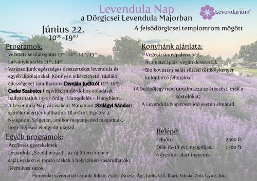 dorgicse_levendula