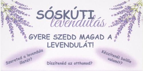 soskuti_levendulas