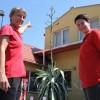 A miskolci agávé: negyven év pompa után pusztulás