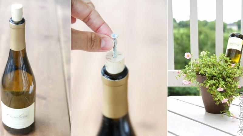 Borosüvegből csepegtető öntöző házilag