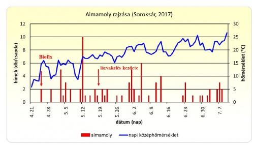 almamoly_rajzas_2017