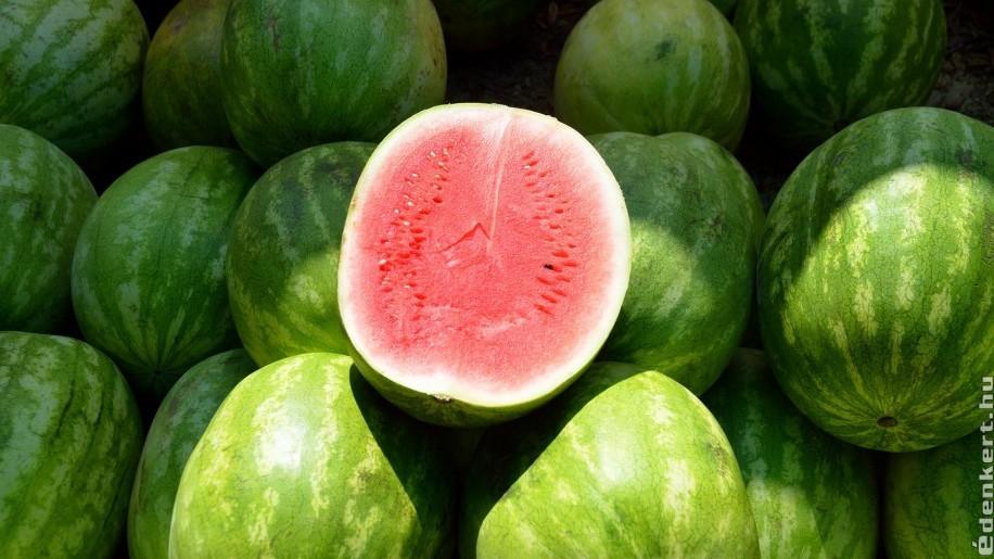 8 tipp, hogy a legédesebb görögdinnyét válasszuk ki