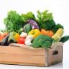 FruitVeB: 5-10 százalékkal több lehet az idei zöldségtermés a tavalyinál