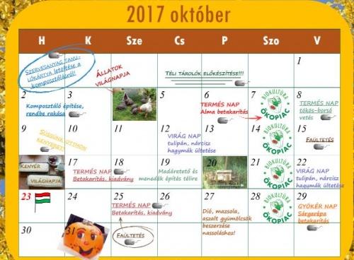oktober_okokert