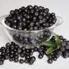 Superfood és dísznövény lehet az év gyümölcse?