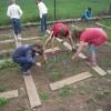 Biztonságos iskolakertek – egészséges talajokon!