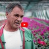 Budapest virágai - Kisfilm a fővárosi kertészek mindennapjaiból