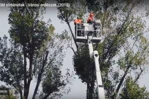 Városi erdészek - Kisfilm a fővárosi kertészek mindennapjaiból